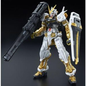 RG Astray Gold Frame
