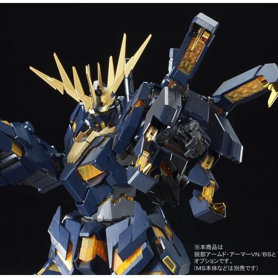 1/60 Expansion Unit Armed Armor VN/
